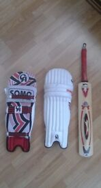 Youth cricket bat and pads.