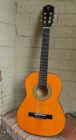 Tanglewood Discovery 3/4 size Guitar with case