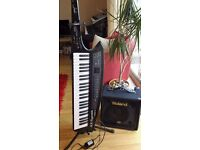 Roland AX Synth and Roland KC 30 Keyboard Amp