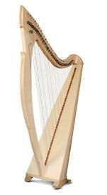 Lever Harp for Rent -38 Salvi Egan