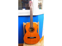 Acoustic guitar with carrying case