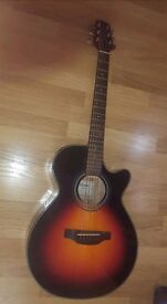 Takamine G series Guitar