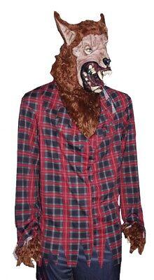 Mens Adult WEREWOLF Wolf Man Halloween Costume Mask Wig Scary Purim XL NEW ()
