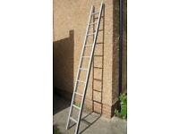 Metal Ladder, 10 Rungs