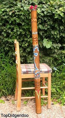 "47""120cm Aboriginal DIDGERIDOO Kangaroo Handcarved Dot-Painted Art +Bag+BeesWax"