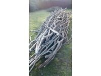 Huge stack of logs, tree branches and trunks - possible fire wood. Free!