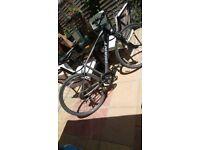 Giant roam road bike