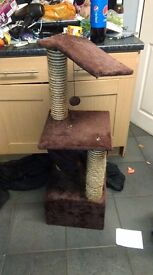 Cats scratching post
