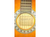 guitar ideal for beginners