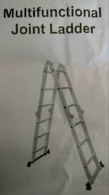 Multipurpose Scaffold Ladder