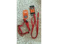 Extra Small Dog Harness & Lead - Red
