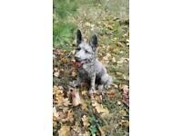 German shepherd dog stone ornament garden