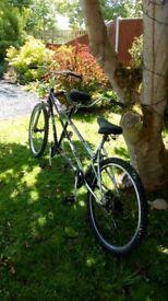 Ammaco twin peaks tandem bike