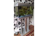 Aquarium and stand