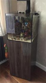 Evolution Aqua eaReef 450'S' Aquarium and Cabinet inc sump, skimmer, light, pump and pipe work!!