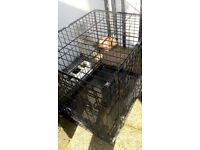 Pet carrier/cage