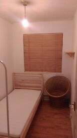 Single room in cosy, stylish Plaistow flat with cat and garden 500cm (inclusive)