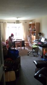 single room in clean and pleasant family flat