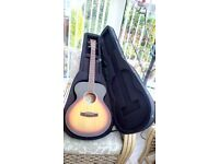 Tanglwood acoustic folk guitar with tailored hard foam case
