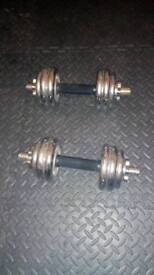 Body sculpture 20kg in total pair of cast iron standard plates dumbbells