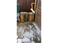 Tree stumps fire wood