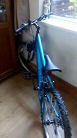 Boy's 18 gear bike
