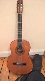 Hohner Leyanda Lina Guitar