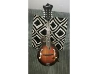 Ashbury Electro Mandolin