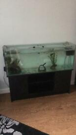 4ft fish tank and stand