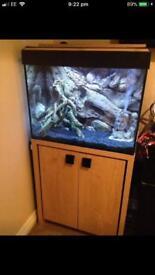 Fluval 90L fish tank