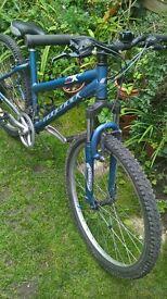 ridgeback mx 200 mtb( ready to ride)