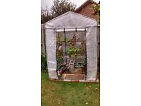4' x 4' Plastic greenhouse only used one season in excellent condition many extras