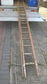 ladder 13 runner