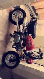 Skyteam monkey bike 125cc