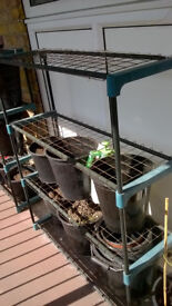 free standing plant display racks, each one has 4 wire mesh shelves. 4 racks in all includes pots