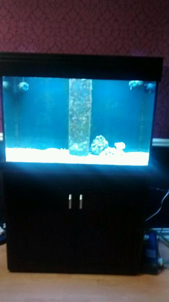 Aqua one aqua reef 300 complete fish tank with sump and for Used 300 gallon fish tank for sale