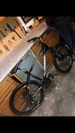 Giant revel mountain bike