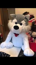 Huge Husky Teddy - Sensible offers!