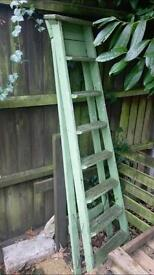 Stylish garden ladder