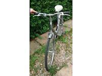 Comfy bike for sale