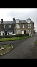 CARLUKE Large 1 bed flat To Let (07970824832)