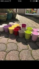 Selection of indoor plant pots pot covers orchids