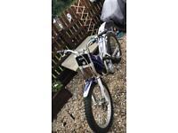 250 trials bike