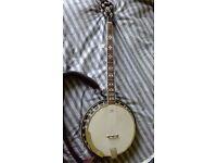 Five string Cort banjo for sale