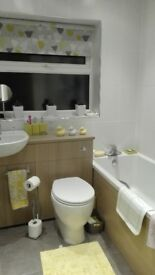 BATHROOM SUITE with basin/toilet combination unit