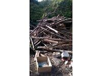 large amount of seasoned wood