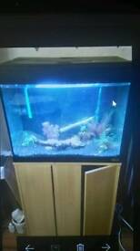 Unusual 2ft tank with cabinet about 190 litres with external filter £130