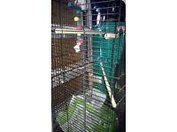 black bird cage as new