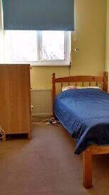 Single room to rent!