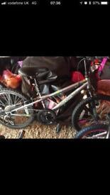 Spector bike 6-9 year old